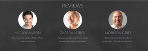 Reviews in Business template Company