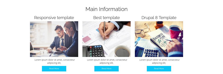 drupal business theme information