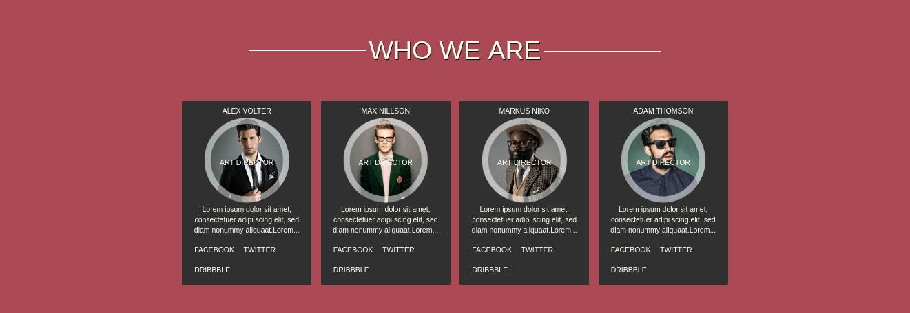 One Page Portfolio Theme team