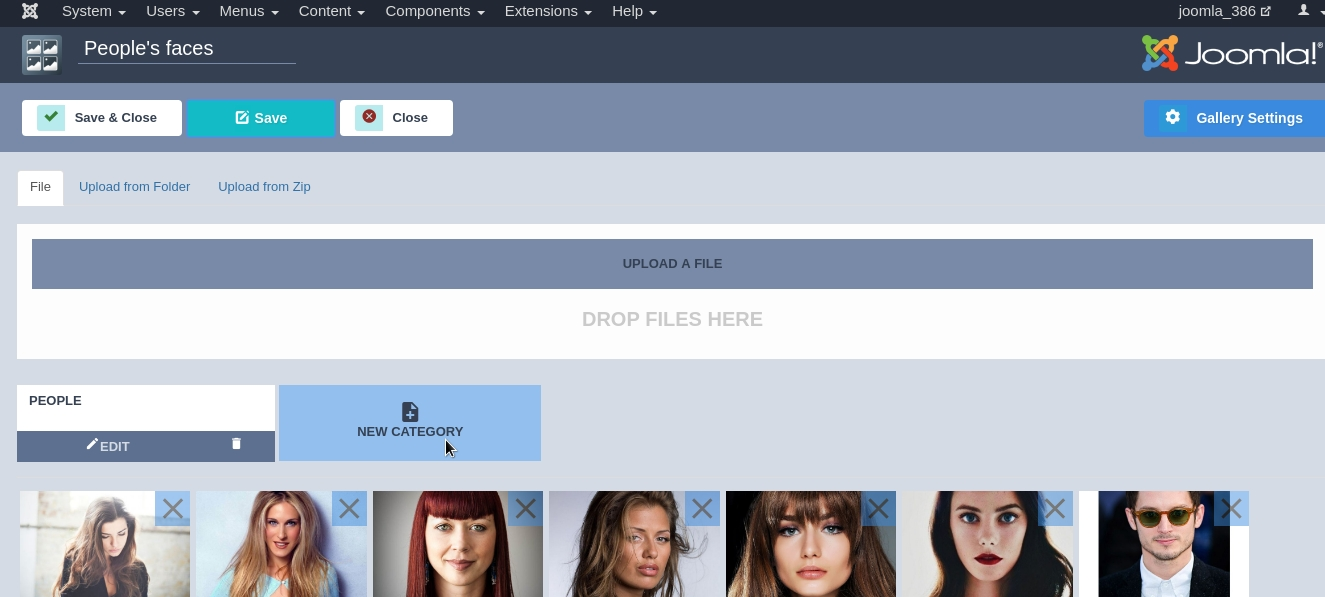 Joomla Image Gallery - Joomla Gallery extension, create category for images