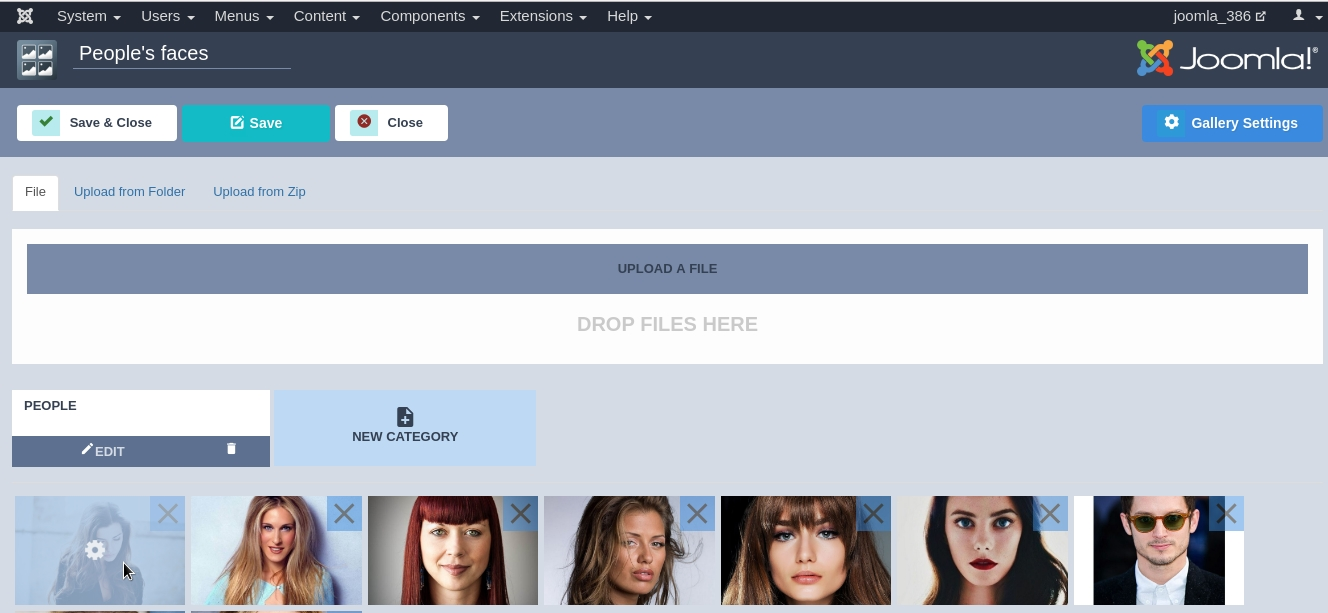 Joomla Image Gallery - Joomla Gallery extension, how to change images name, title, link, target