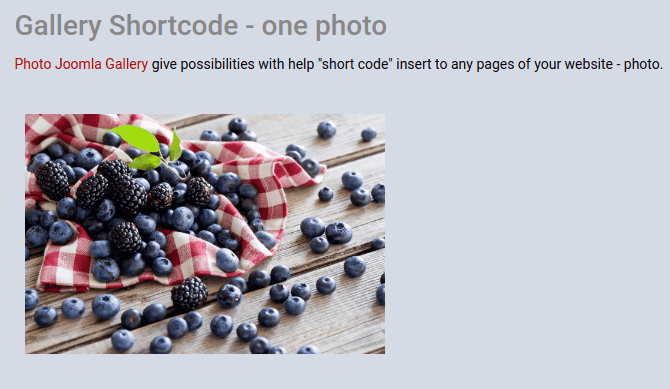 Use Joomla Shortcode with one image