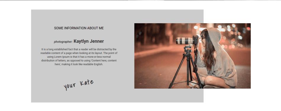 portfolio website template, information about company