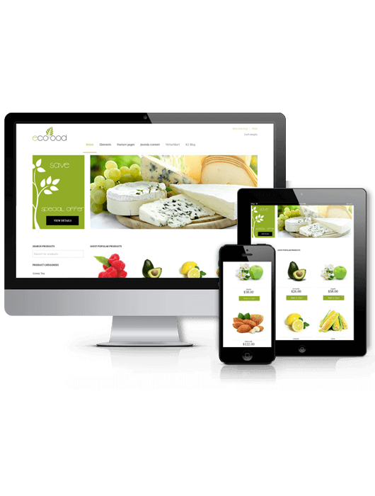 Food Website Design Eco-food