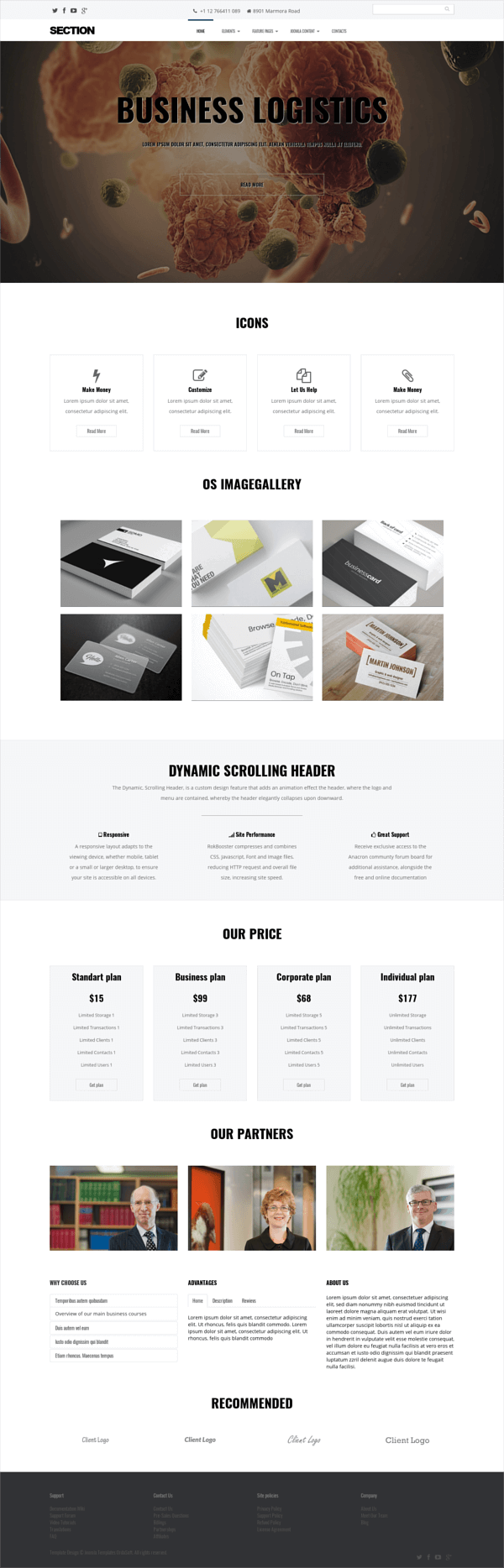 Section, free multipurpose Joomla template
