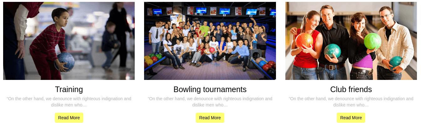 Free Wordpress Theme Bowling Blog