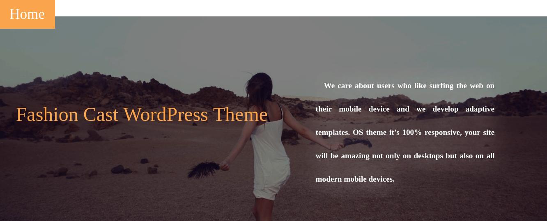 Fashion Cast Wordpress Theme about