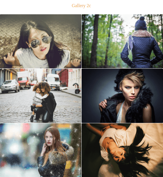 Fashion Cast Wordpress Theme gallery