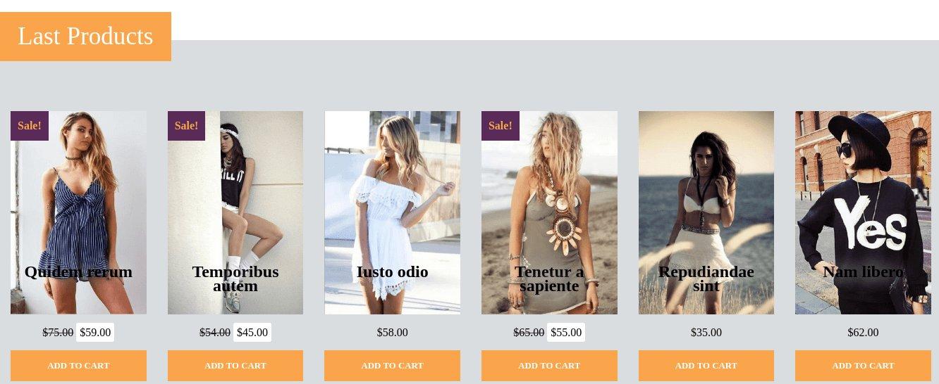 Fashion Cast Wordpress Theme shop