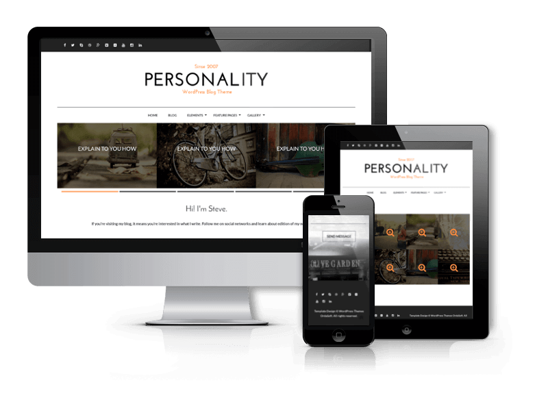 Best WordPress Themes 2015 from OrdaSoft - Personality