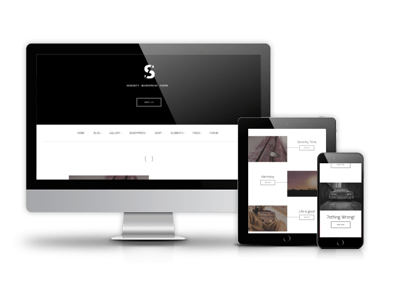 Best Business WordPress theme 2015 from OrdaSoft - Serenity