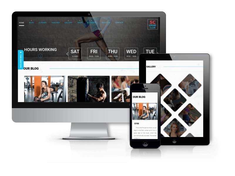 Sports WordPress Theme Sport Club