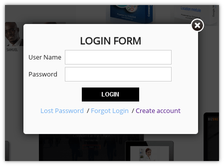 Ordasoft log in button