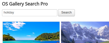 search module for photo gallery