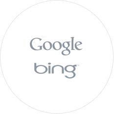 Sef translate Google and Bing Translation Api